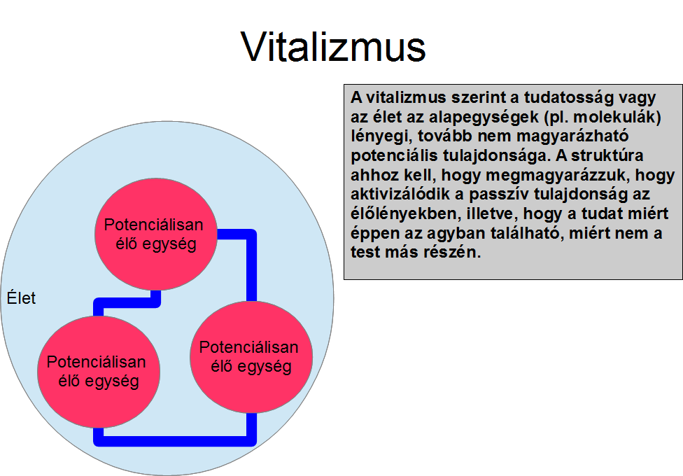 vitalizmus.png