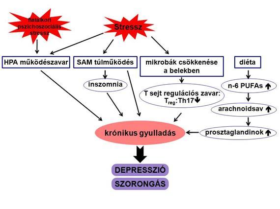 2011-0094_neurologia_hu_1.jpg
