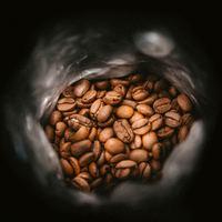 Specialty: A kávék arisztokratái