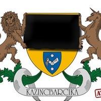 Kazincbarcika jogsértően titkol közérdekű adatokat