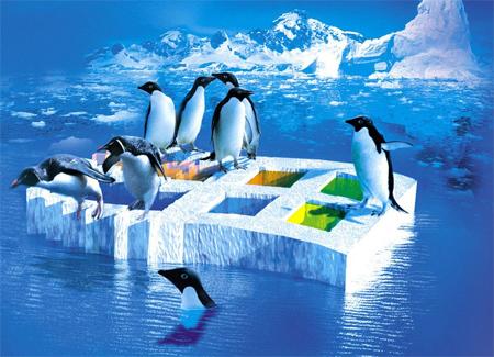 penguinwindows.jpg