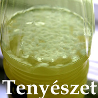 Újabb áldozat a gusztustalanság oltárán - tenyészet a citromlében