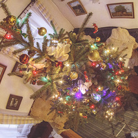 Karácsony 2012 - nálunk ilyen volt
