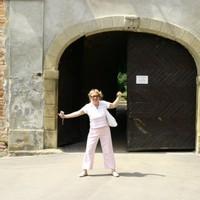 Szigetvár - A nagy kirohanás