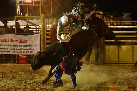Cowboyok, Bikák, bohócok, esések meg minden ami rodeó - ilyet is láttam