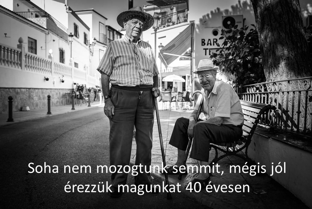 40_eves_2.jpg