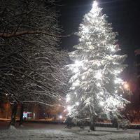 Fehér karácsony #2