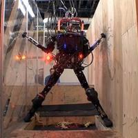 Ugrál, mászik, lépcsőzik a humanoid robot
