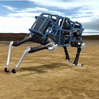 Boltnál is gyorsabb a robotgepárd