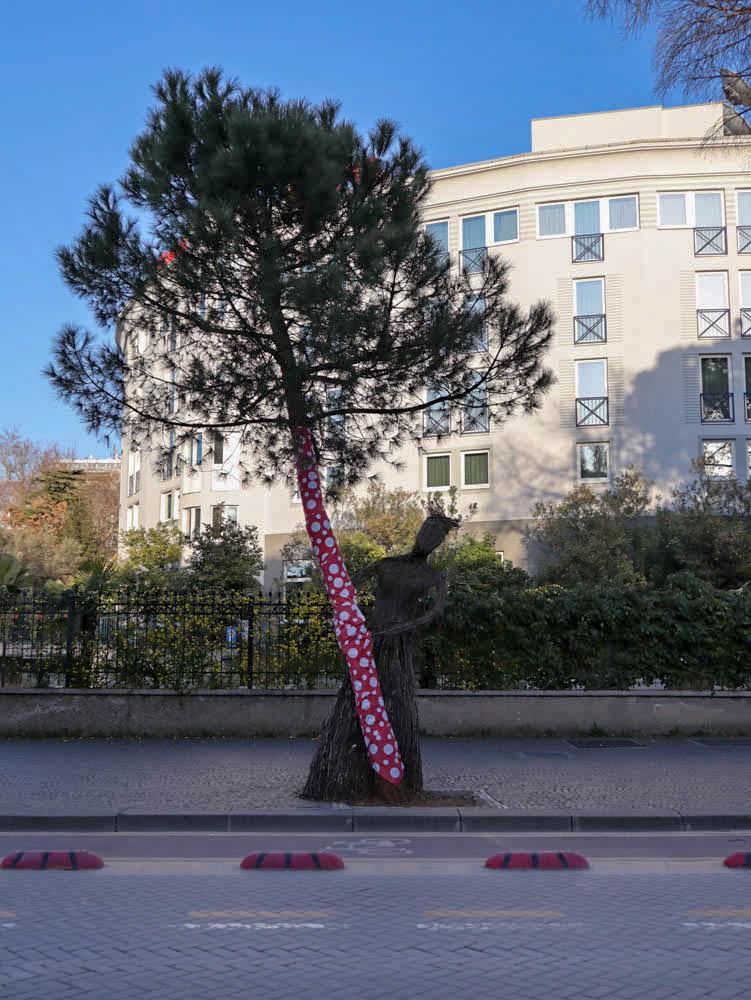 Dita e Veres, Tirana