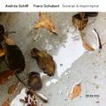 Schiff András: Franz Schubert Sonatas & Impromptus