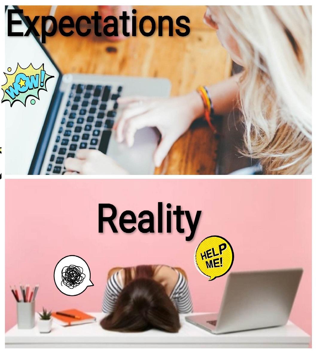 expvs_real_1.jpg