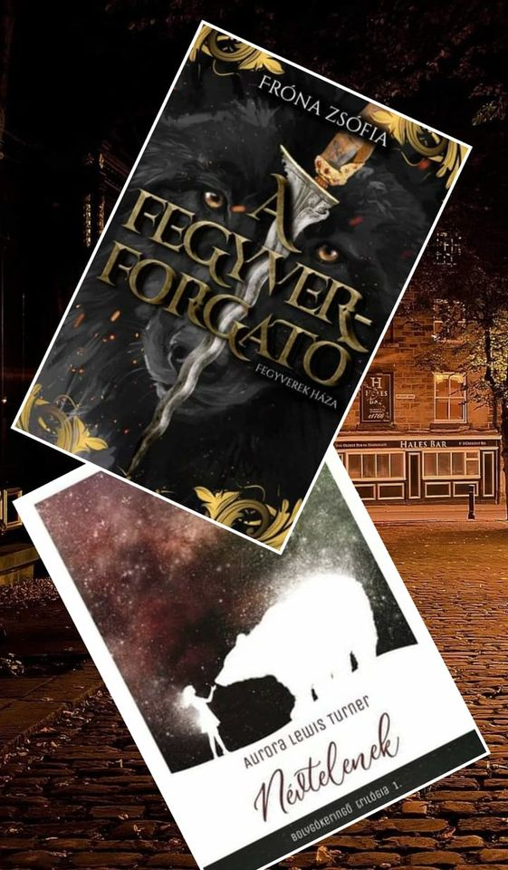 Fróna Zsófia –  Aurora Lewis Turner: A névtelen fegyverforgató