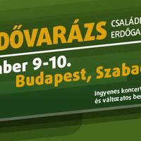Erdővarázs a város szívében.. (Budapest - Szabadság tér)
