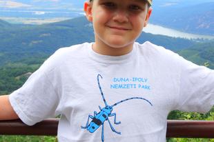 Tanösvény kalandok..( DINP Budai Sas-hegy Látogatóközpont)