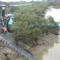 Darubaleset - Huruhuru folyó, Új-Zéland