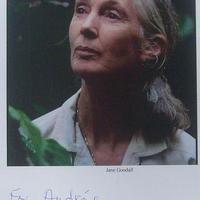 Jane Goodall kézírásos üzenete a Föld Napján