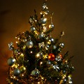 Karácsonyi beszámoló