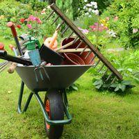 Ha ősz, akkor jöhetnek a turbó fokozatú kerti munkák!