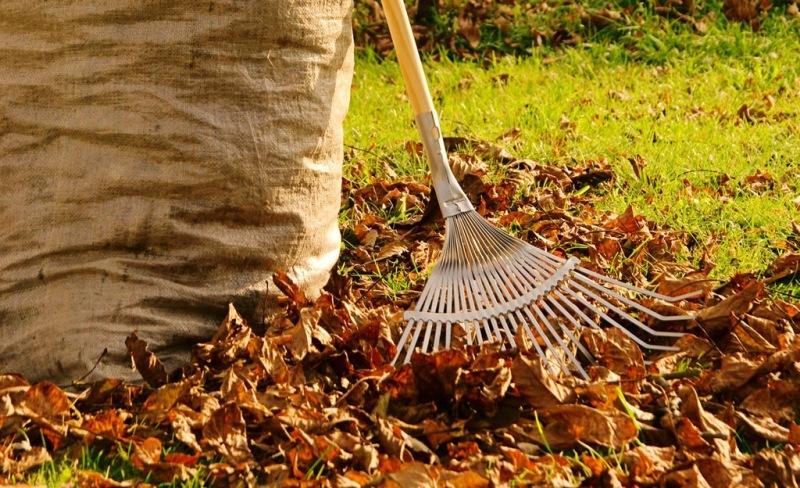 fall-gardening.jpg