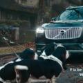 Ezért a kamureklámért valakinek szét fogja perelni a xxxgét a Volvo