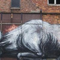 Nekem itt kezdődik a Street Art. Roa.