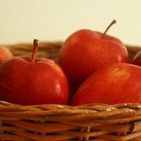 A kis almaszedő