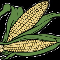 Kukoricázzunk