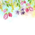 Szóvirágok
