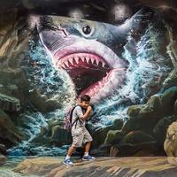 Vizipóló cápa módra