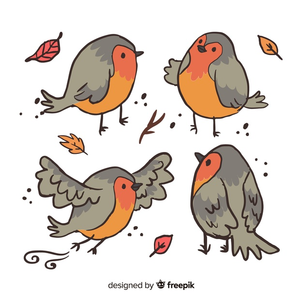 pack-hand-drawn-birds_23-2148252719.jpg
