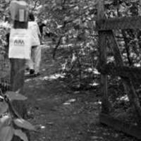 A Terebesi erdő lakói egyeztettek a Kőbányai Önkormányzattal