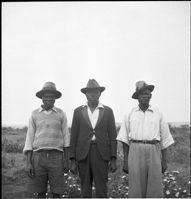 Pritchard-Luo ferfiak kogelo klanbol-1936_kicsi.jpg