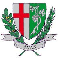Címert az Avasnak!