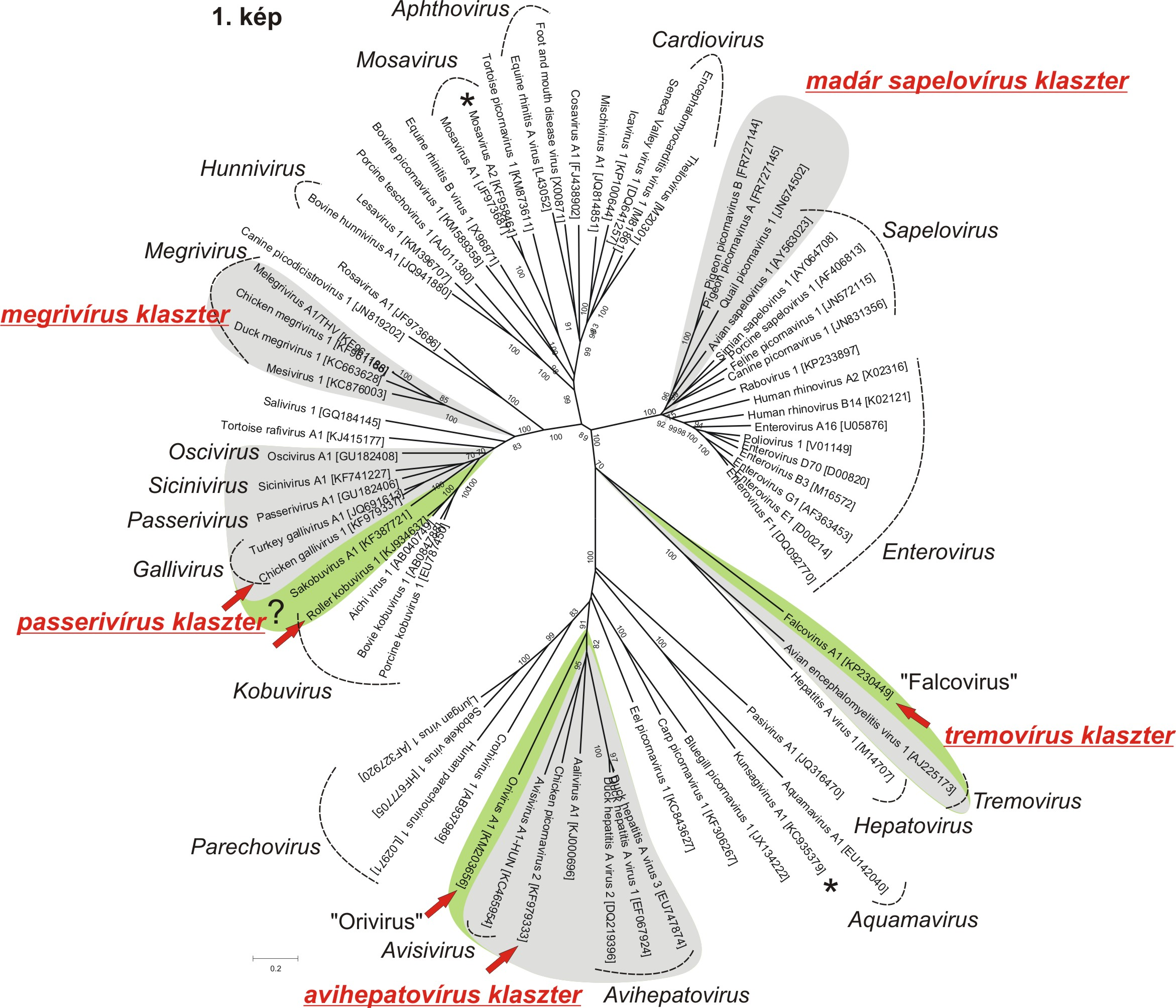 madarpvk-3d-aa-tree-2015-04-09.jpg