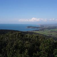 Az Etruszkok nyomában – Costa degli Etruschi