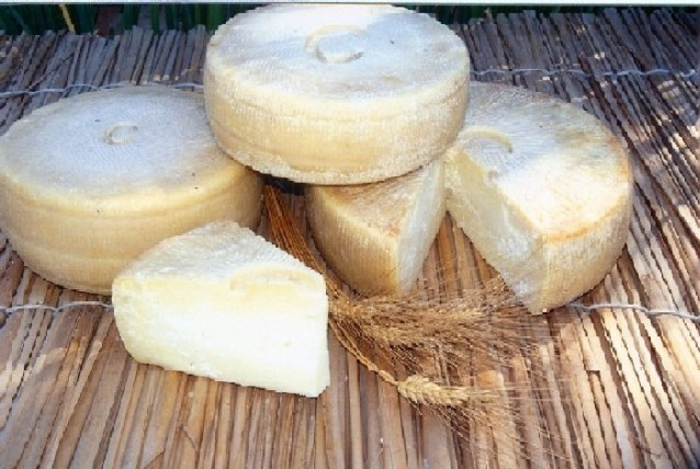 tuscan_cheese.jpg