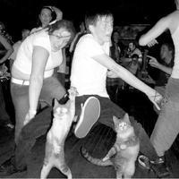 Már nem Szabad egy táncra?