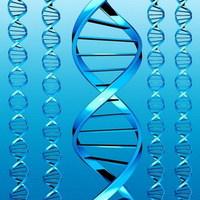 Megdöbbentő eredményt hozott a szélsőjobboldali férfi génvizsgálata