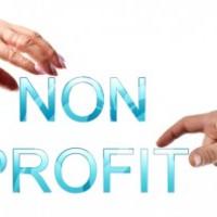 A non-profit a non plus ultra!