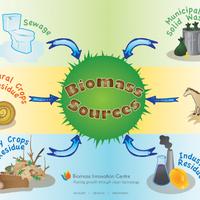Bioenergetika, a nagy feltörekvő