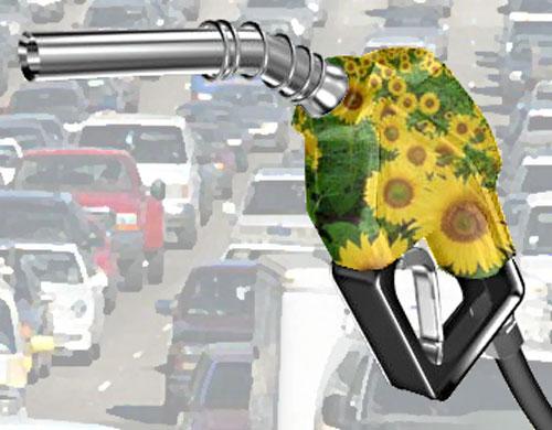 Üzemanyag a fritőzből