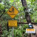Ausztrália legveszélyesebb állatai - Top 7
