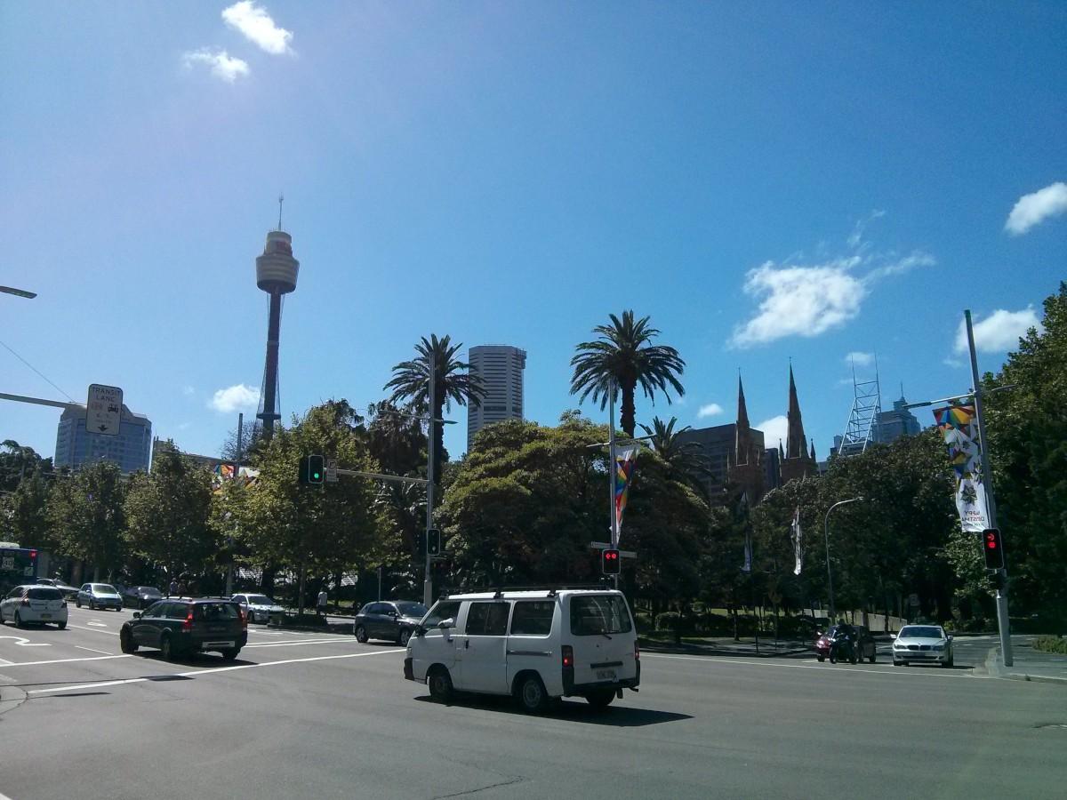 Sydney és a pálmafák