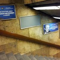 """A magyar """"néplélekről"""" és a kútmérgezésről"""