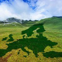 Mi fán terem a jobboldali zöldpolitika?