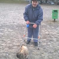Picur, az életmentő kiskutya