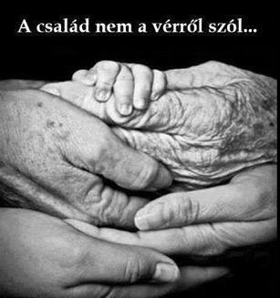 a_csalad_nem_a_verrol_szol.JPG