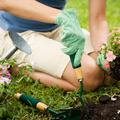 Tippek egy kerthez, ami mindig pompázik