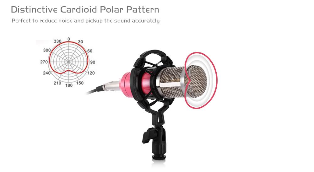 b800-microfon.jpg